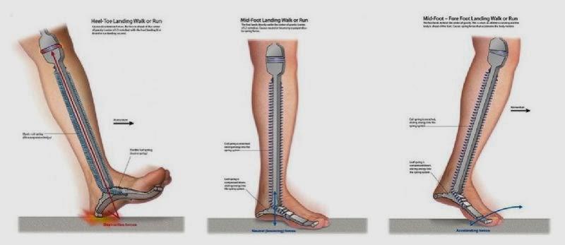slăbiciune constantă și dureri articulare tratament articular și muscular