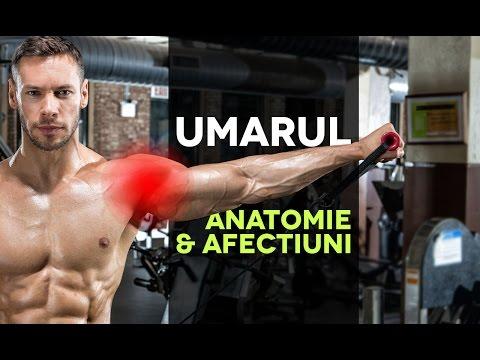 decât tratează durerea în mușchi și articulații