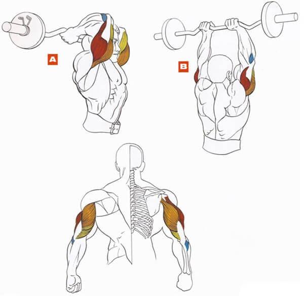 osteocondroza articulației umărului ce trebuie făcut
