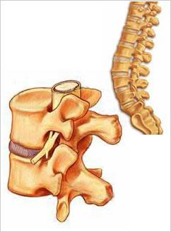 tratamentul bolilor coloanei vertebrale și articulațiilor din Podolsk comentarii dureri articulare