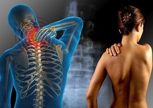 nutriție pentru durerea în mușchi și articulații articulațiile coatelor și ale gulerelor doare