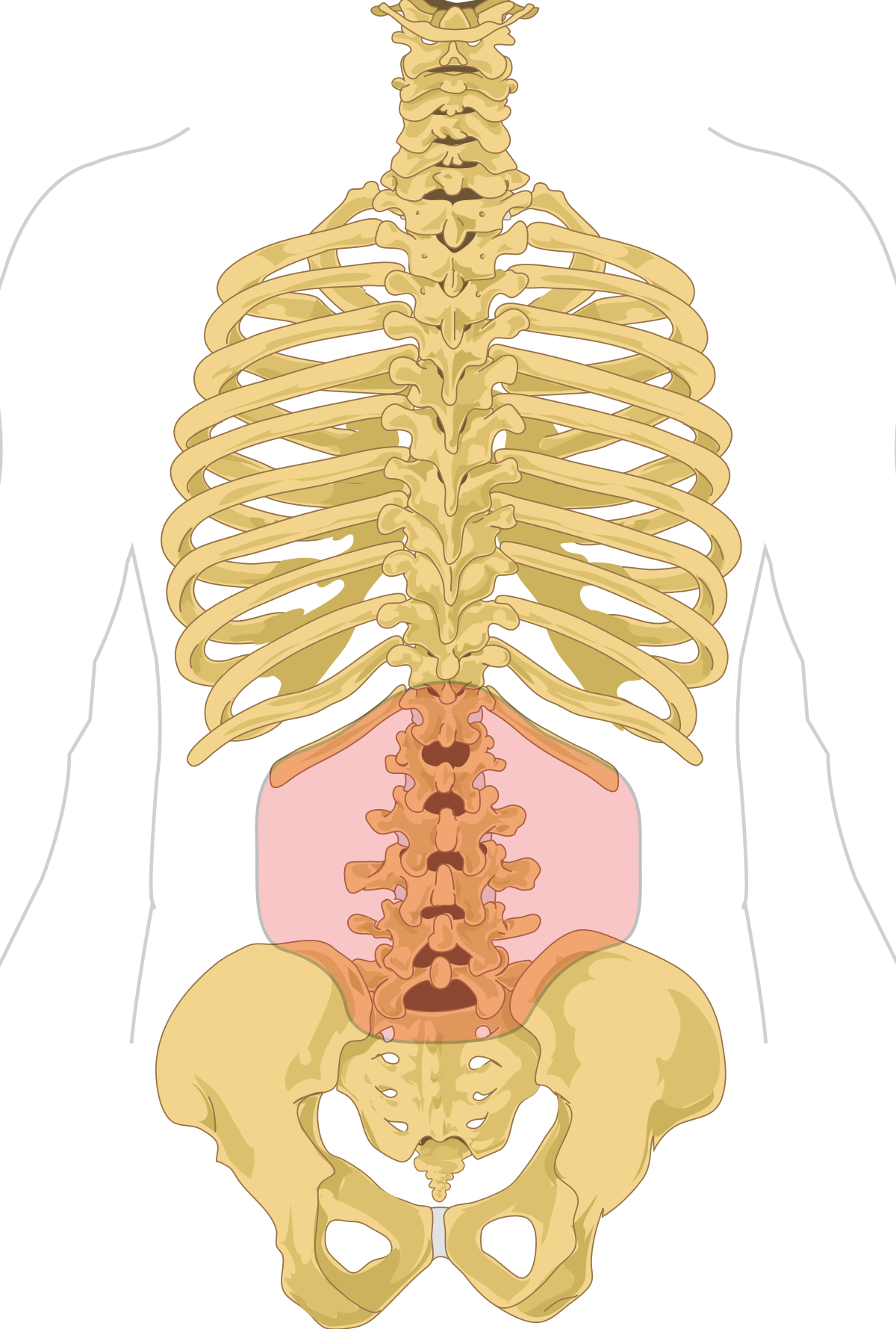 87 de ani de dureri articulare cum se tratează artroza terry