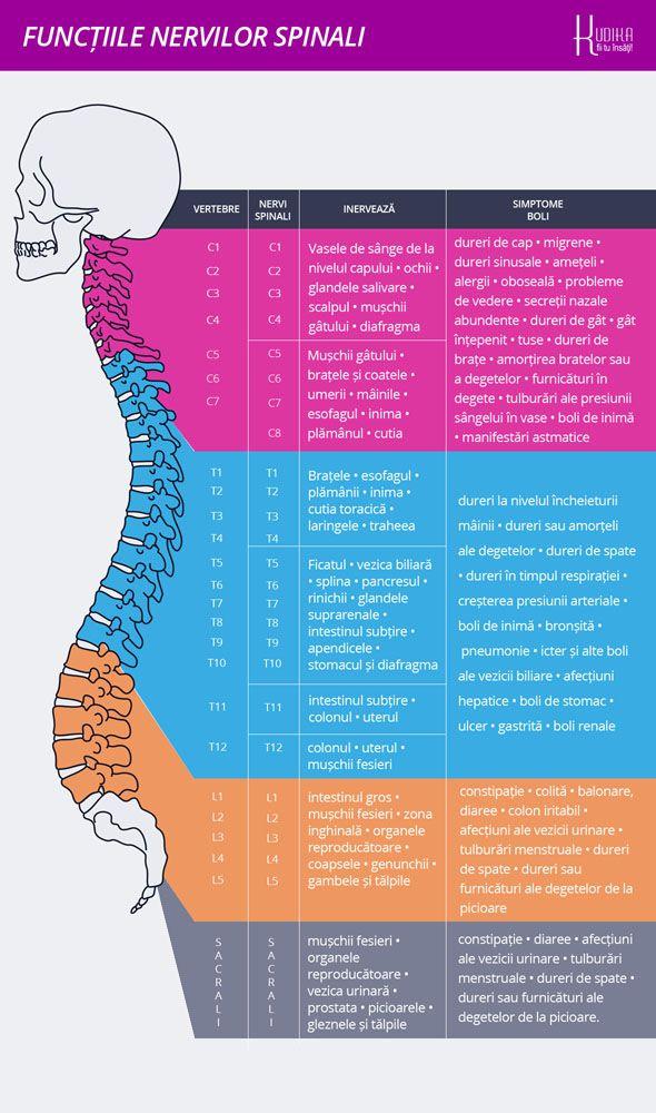 articulații dureroase ale brațelor și ale coloanei vertebrale artrita mâinilor care se vindecă