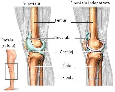 după leziuni și fracturi ale articulațiilor