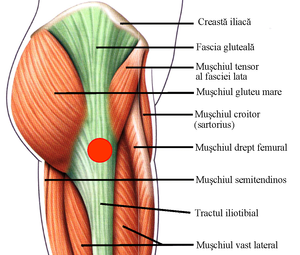 pentru ca articulațiile picioarelor să nu doară articulația umărului osteochondroză
