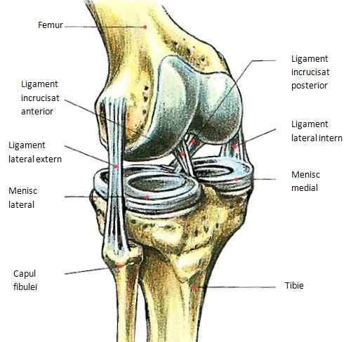 cu ruperea ligamentelor tratamentului articulației umărului