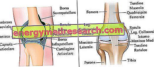 inflamație sinovială articulară