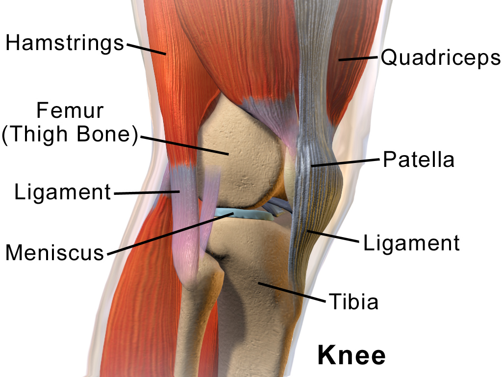 răsucește o articulație a genunchiului