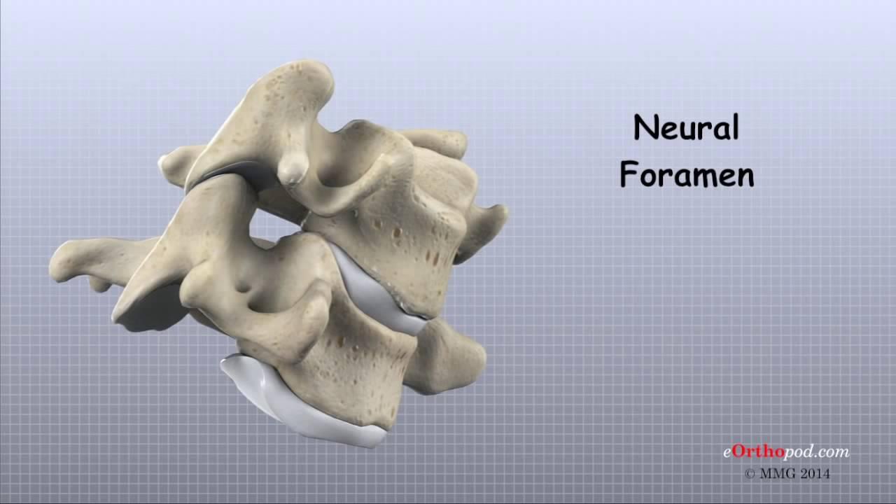 osteoartrita tratamentului tuturor articulațiilor dureri osoase și articulare la copii