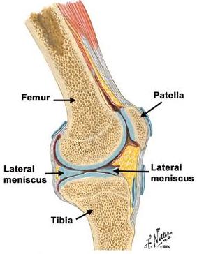Durerile de genunchi in timp ce urcati scarile ar putea fi primul semn de artroza