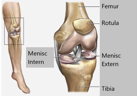după blocarea genunchiului  genunchiul doare