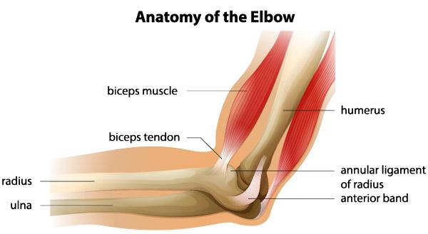 durere în antebraț și articulație la cot