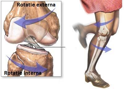 boala articulației periartritei