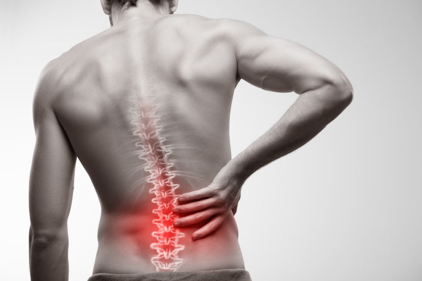 dureri articulare de iarbă articulațiile tratează țelina